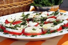 2 piknik bocconcini platter Fotografia Royalty Free