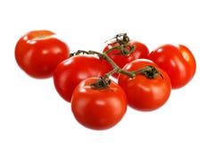 2 pomidoru Zdjęcia Royalty Free