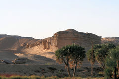2 pustynny egipcjanin Zdjęcia Royalty Free