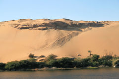 2 pustynny egipcjanin Obrazy Stock
