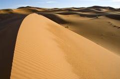 2 pustynny wydmowy Sahara Obrazy Stock