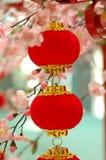 2 röda traditionella för kineslykta Royaltyfri Foto