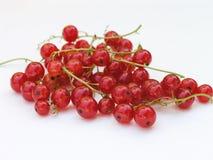 2 röda vinbär Arkivbild