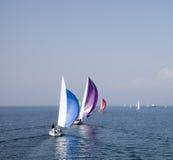 2 regatta Zdjęcie Royalty Free