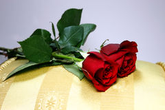 2 Roses on Gold Pillow. Still life display of 2 red roses on a yellow striped satin pillow Stock Photos