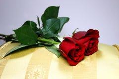 2 roses sur l'oreiller d'or Photos stock