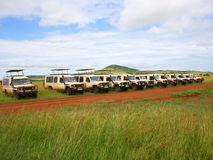 2 safari Zdjęcia Royalty Free