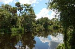 2 sceny creek skórki Fotografia Stock