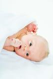 2 semanas recém-nascido Fotos de Stock Royalty Free
