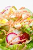 2 serie dell'insalata Immagine Stock
