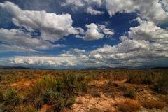 2 skys пустыни Стоковое Фото