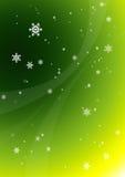 2 snowflakes royaltyfri illustrationer