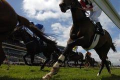 2 som horseracing Royaltyfri Fotografi