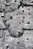 2 sport wspinaczkowa ściany Obraz Stock