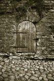 2 stare drzwi. Zdjęcia Royalty Free