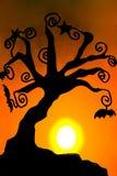 2 stearinljus halloween skugga royaltyfri foto
