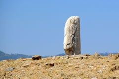2 stelae montre alban Стоковые Изображения RF