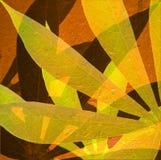 2 strålar sun tapiokor Royaltyfri Fotografi