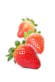 2 strawberrys Royaltyfria Bilder