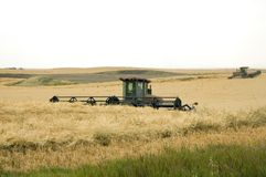 2 swather Fotografia Royalty Free
