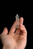 2 szachów kawałki Obrazy Stock