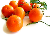 2 tangerines φύλλων λευκό Στοκ φωτογραφίες με δικαίωμα ελεύθερης χρήσης