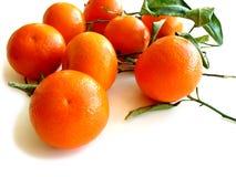 2 tangerines листьев белого Стоковые Фотографии RF