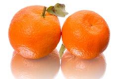 2 tangerines на белизне Стоковое Изображение
