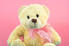 2 teddy bear Fotografia Royalty Free