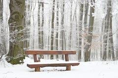 2 temperatury zamarzania Fotografia Royalty Free
