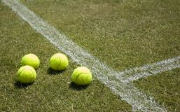 2 tenis trawnika Obraz Stock