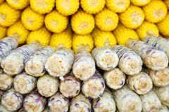 2 tipos hermosos de maíz hervido en el mercado. Fotografía de archivo libre de regalías