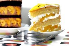 2 tortów pustynia Zdjęcia Stock