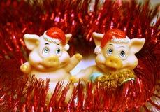 2 trevliga pigs Arkivbild