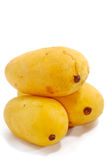 2 tropiska mangoserie Arkivfoto
