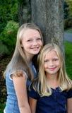 2 vänsystrar Arkivfoton