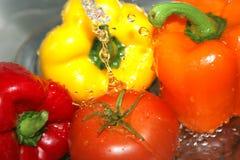 2 våta grönsaker royaltyfri bild