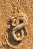 2 wąż Fotografia Royalty Free