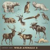 2 wild djur Arkivbild