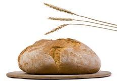 2 występować samodzielnie bochenek chleba pszenicy Obrazy Stock