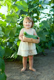 2 years child picking cucumbers Royalty Free Stock Photo
