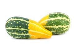 2 yellow-green причудливых тыквы Стоковое фото RF