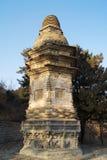 2 yinshan pagodas Royaltyfri Bild