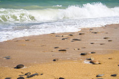 2 złoty na plaży Zdjęcia Stock