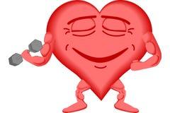 2 zdrowy serce Obraz Royalty Free