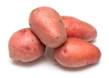 2 ziemniaka Fotografia Stock