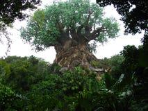 2 zwierząt disneyworld królestwa życia drzewo Fotografia Stock
