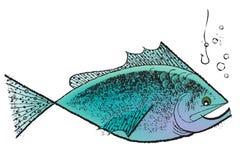 20世纪50年代鱼葡萄酒 库存图片