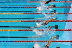 20启动游泳 库存照片