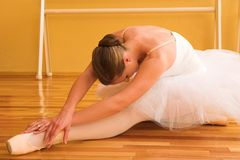 20芭蕾舞女演员 图库摄影